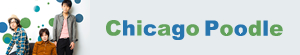 Chicago Poodle『シナリオのないライフ』インタビュー